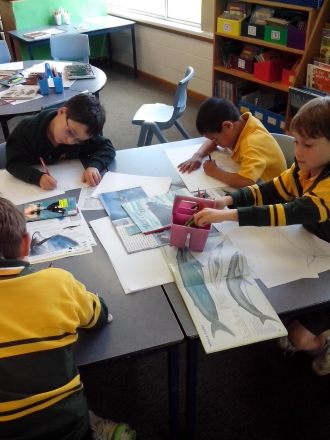 Students reading and drawing about whales
